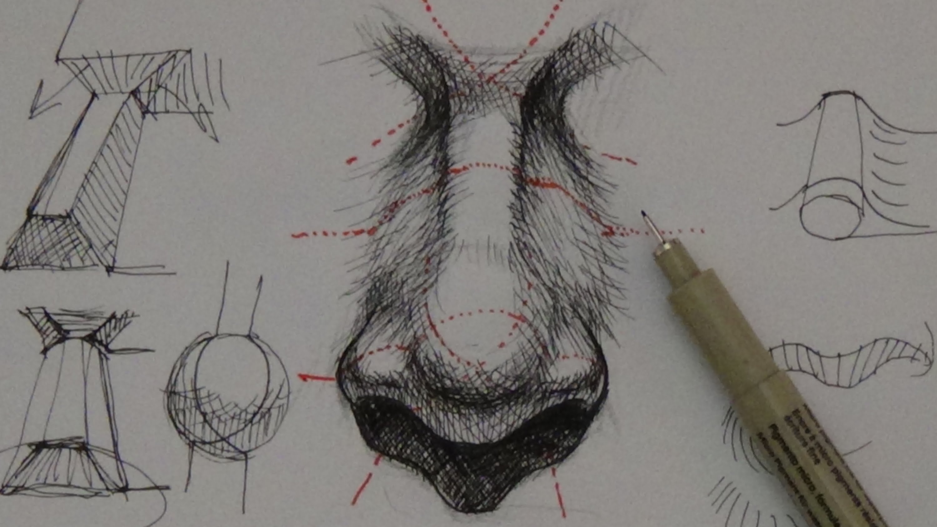 Drawn pen pen drawing Drawing  nose & Ink