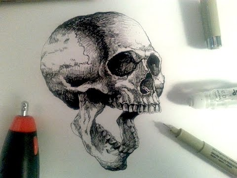 Drawn skeleton realistic Realistic Sakura Demo Pens Drawing
