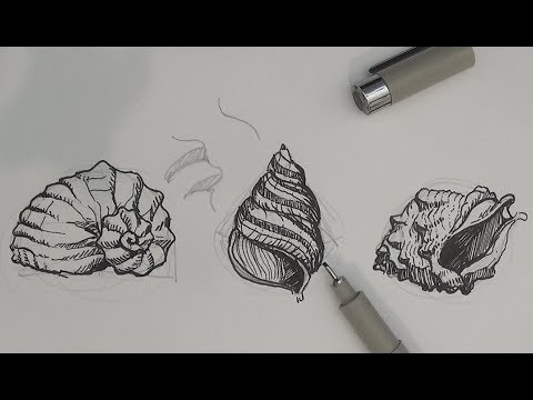 Drawn pen shell Tutorials to Ink Drawing Pen