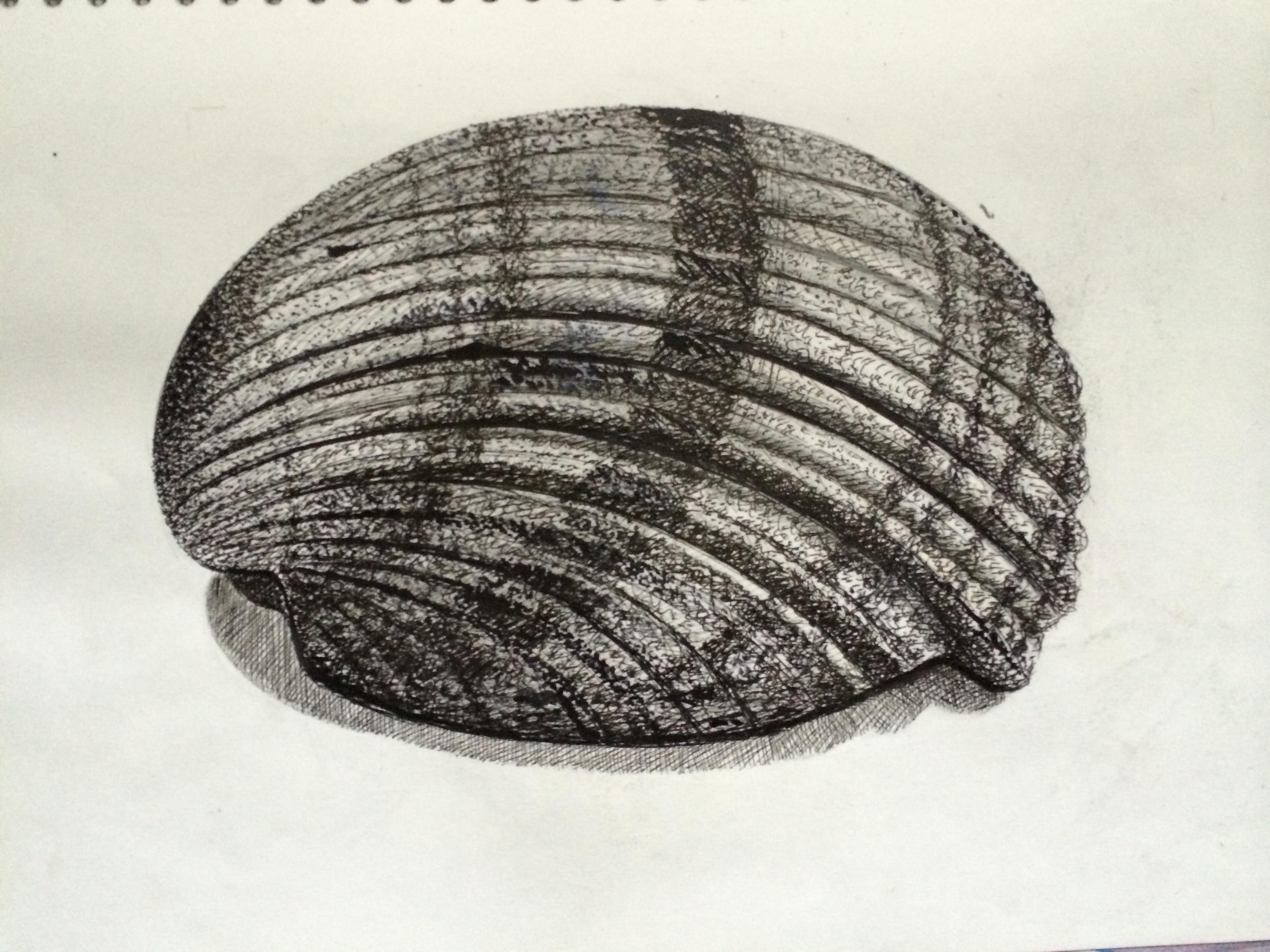 Drawn pen shell Dots and September 2014 black