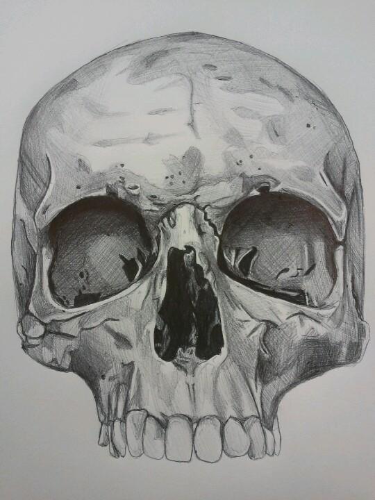 Drawn pen skull Ink winners for Bird is