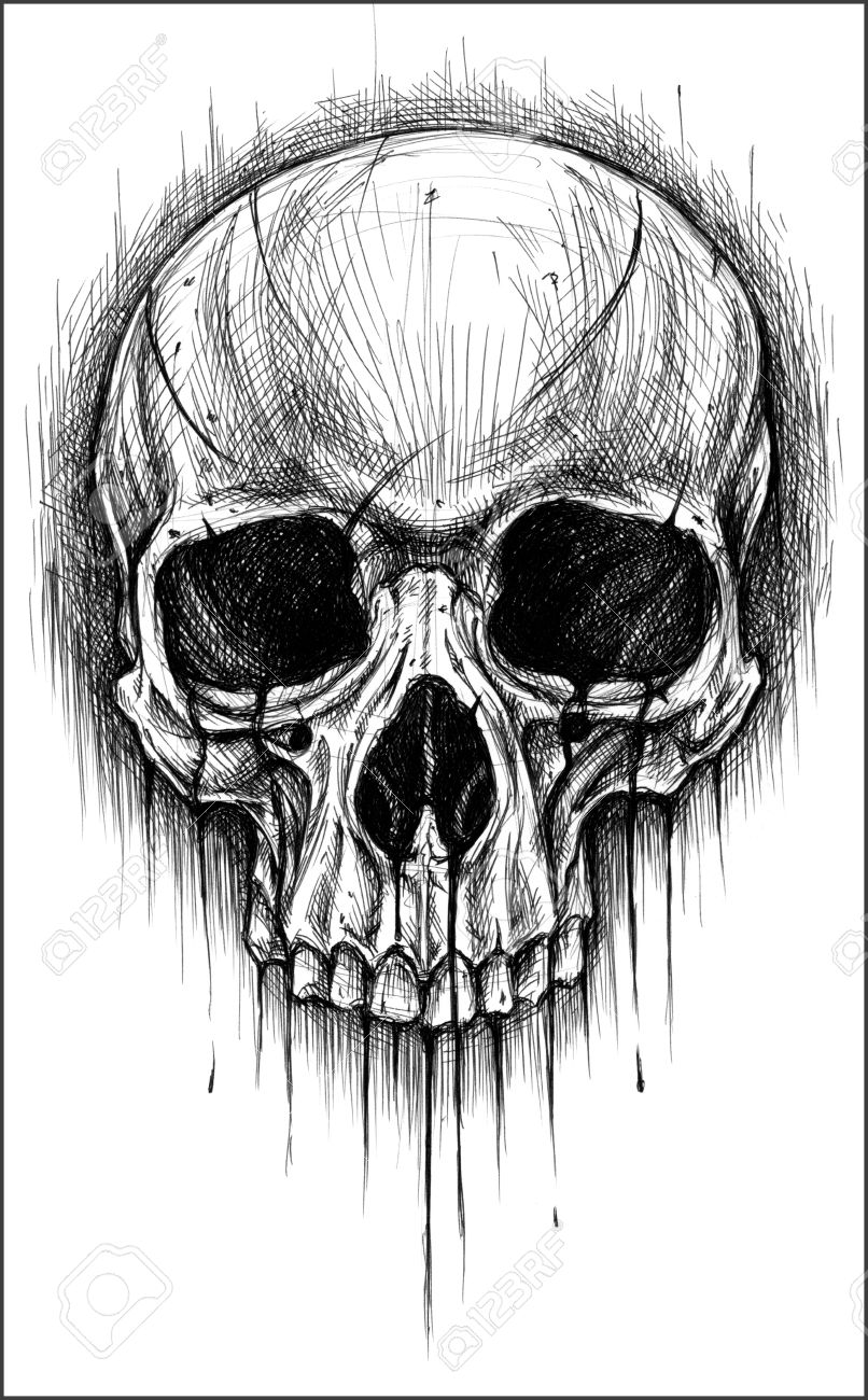 Drawn pen skull Search Google Google Pinterest skull