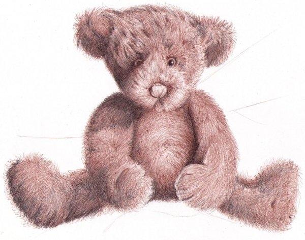 Drawn pen teddy bear Dead b bear with for