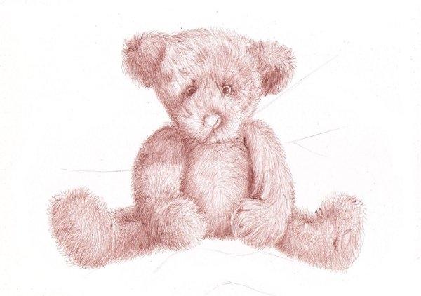 Drawn pen teddy bear The Areas Teddy bear lesson