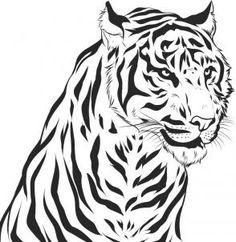 Drawn pen tiger A  to Image a
