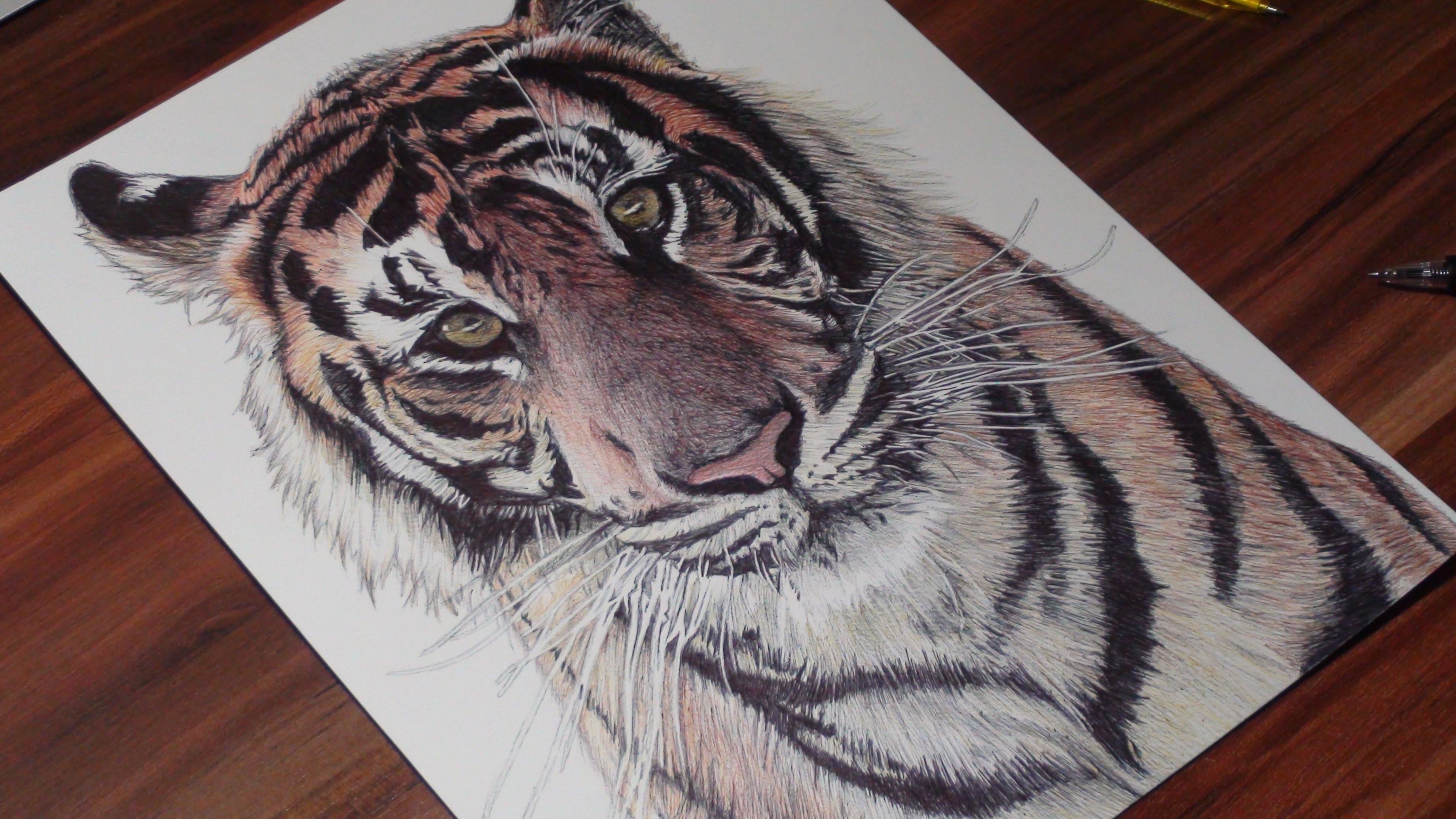 Drawn pen tiger Pen Art YouTube  DeMoose