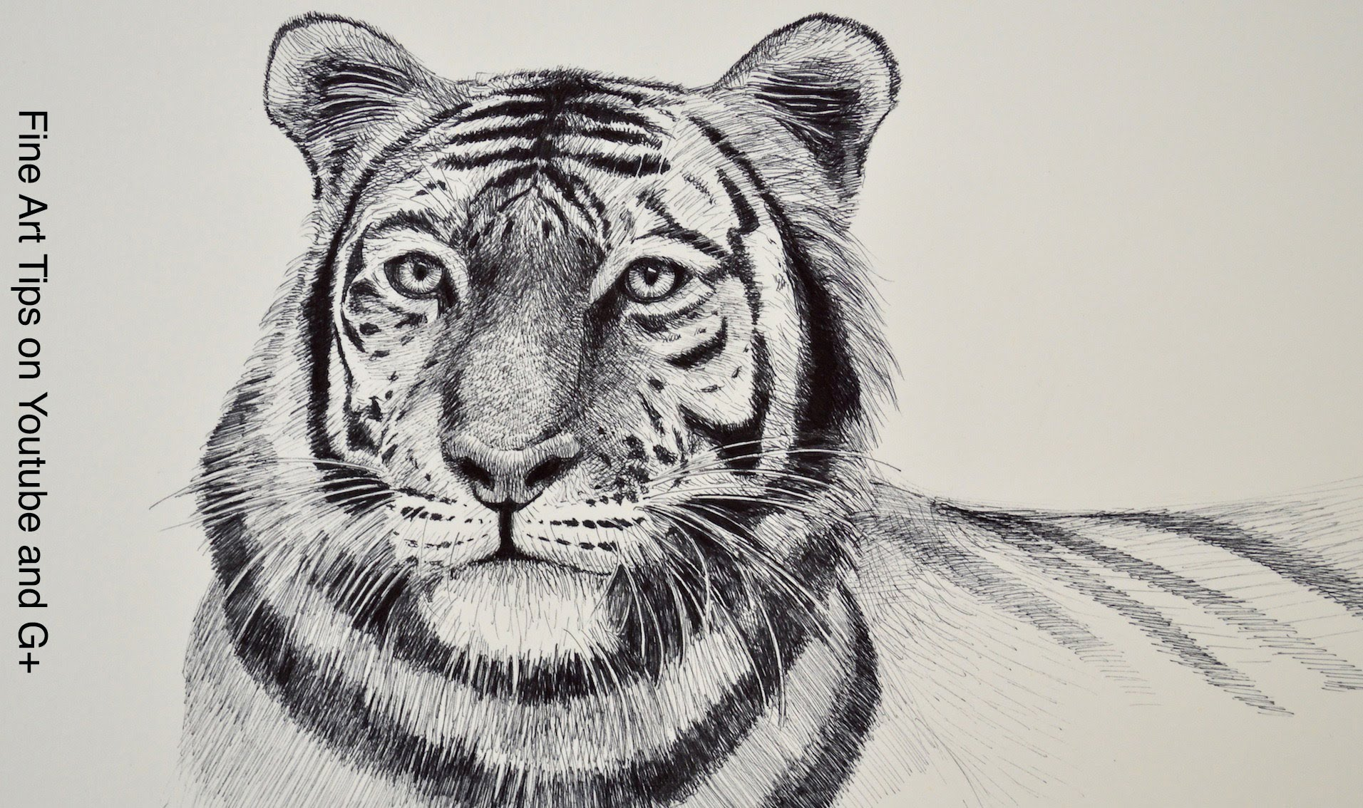 Drawn pen tiger Draw With YouTube Tiger Head
