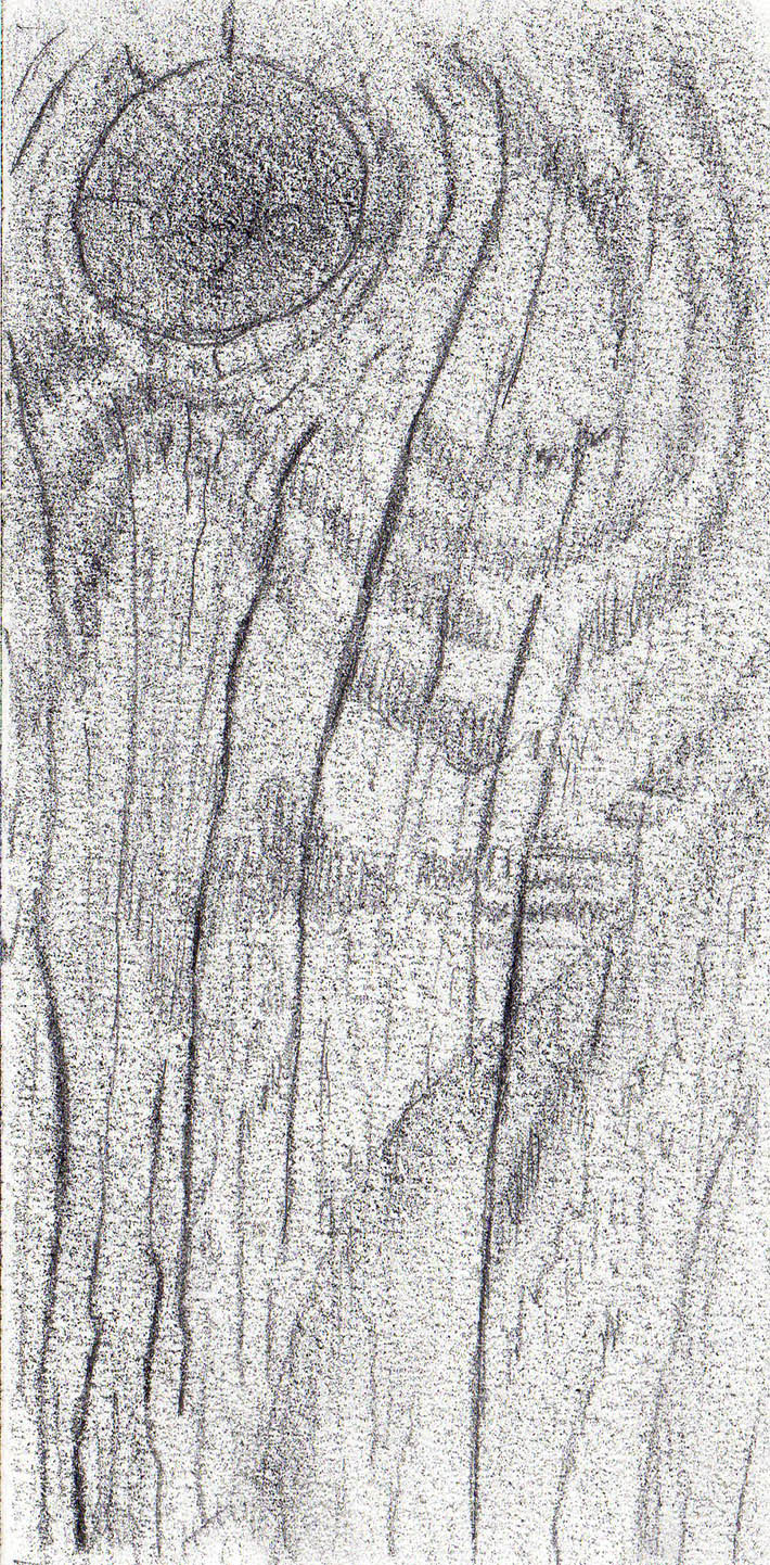 Drawn pen wood Texture Draw How Steps 2