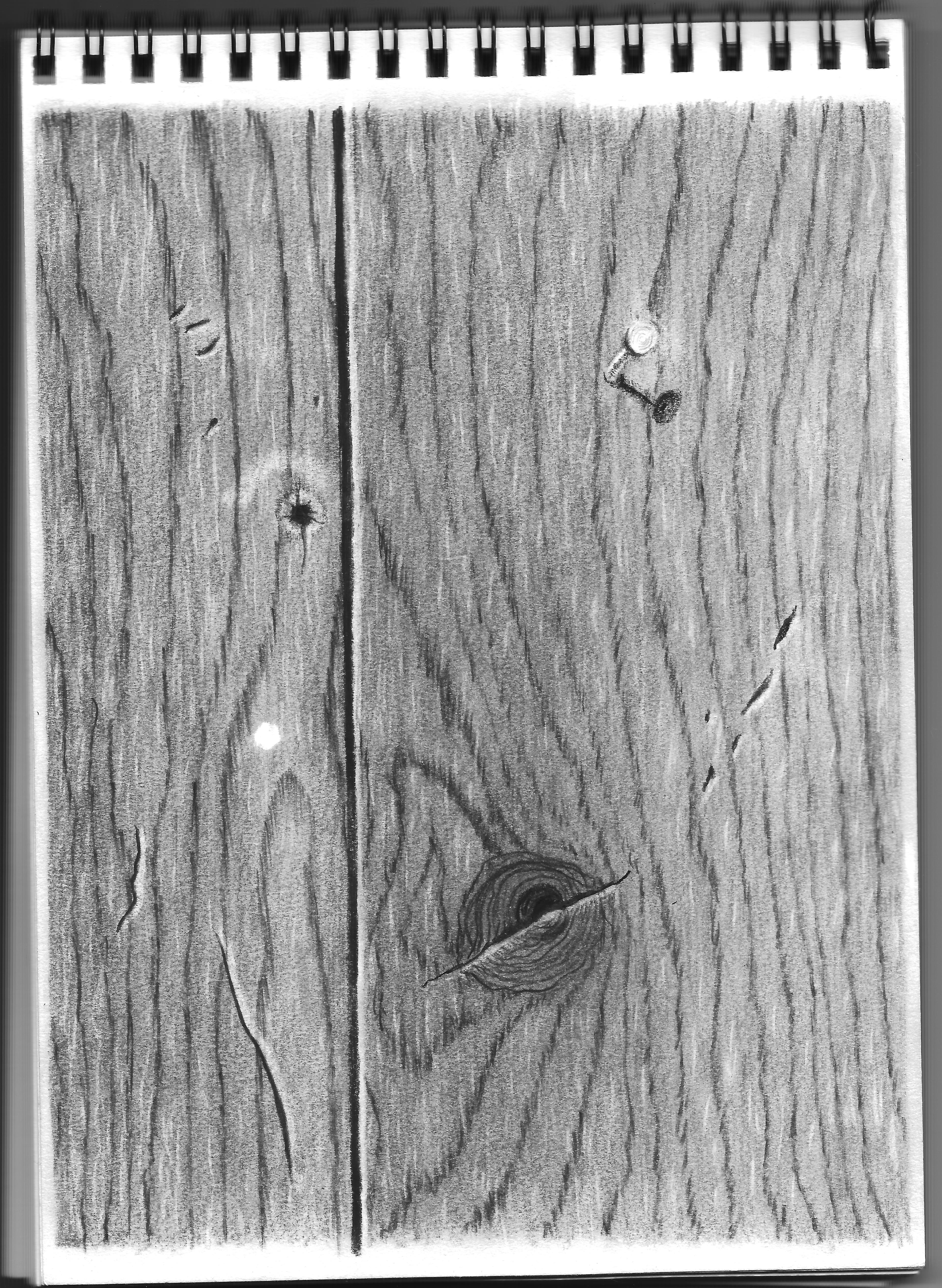 Drawn pen wood Grain progress following of