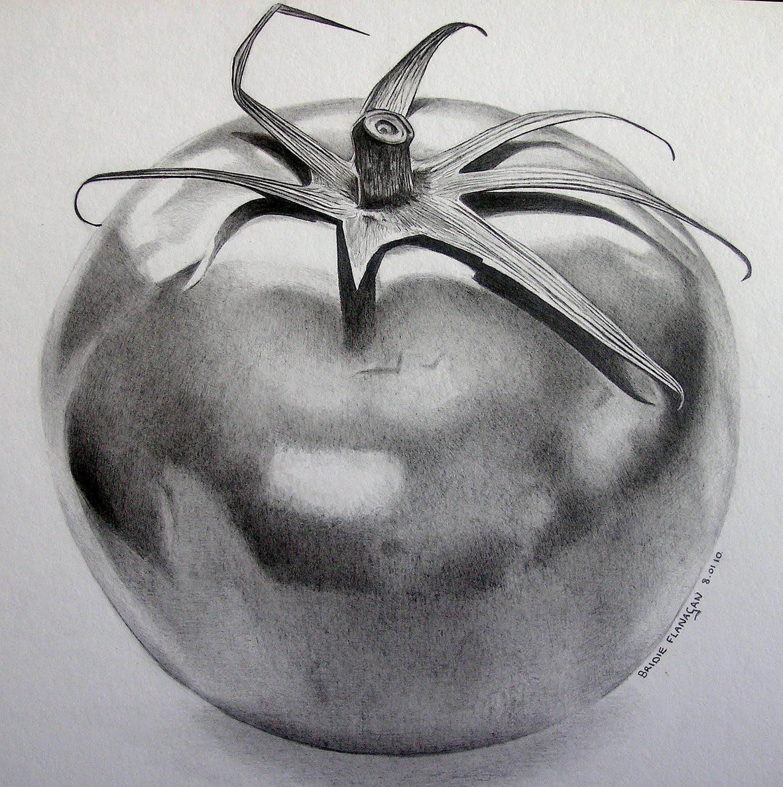 Drawn pencil fruit Artwork comments: 15 Bridie of