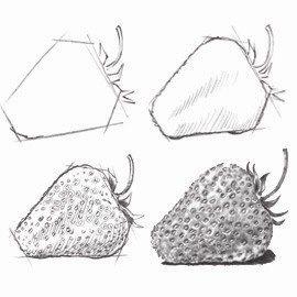 Drawn pencil fruit Sketch Drawn D88bad905c3ddd8a74009ebe045f1d64 Coloring Stock
