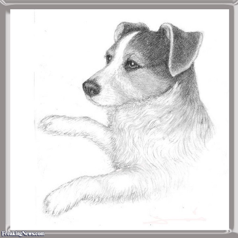 Drawn pencil funny Funny Jack Funny Drawn Russell