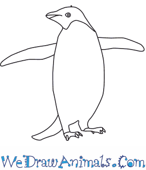 Drawn penguin  Draw an to How
