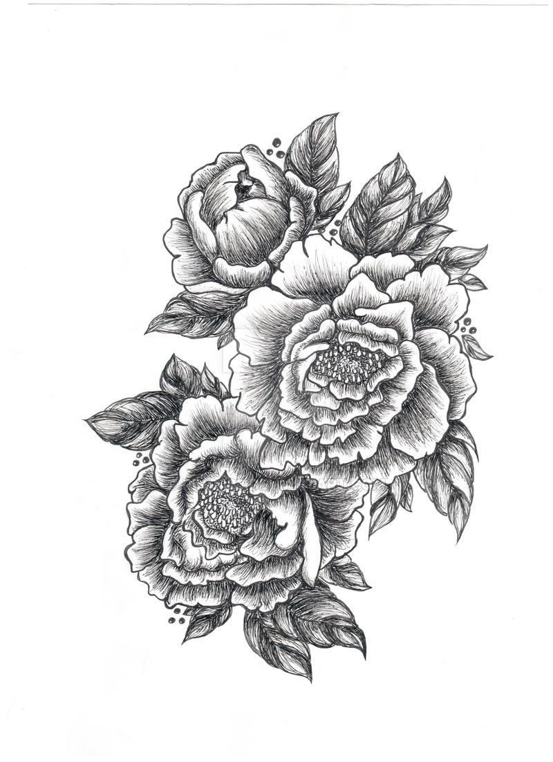 Drawn peony black and white On Peony com deviantart (bw
