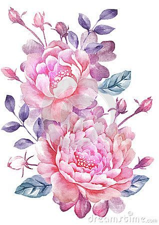 Drawn peony botanical On Watercolor ideas simple Best