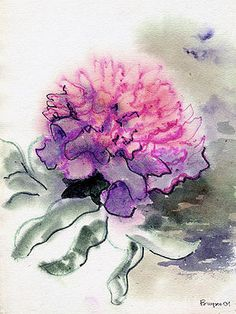 Drawn peony carnation flower Get  Watercolor on my