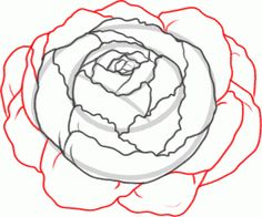 Drawn peony simple Sketchbook draw Flower how a