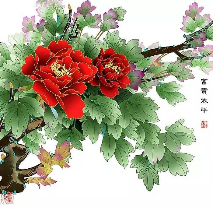 Drawn peony chinese peony 25+ Peony Beautiful best Pinterest