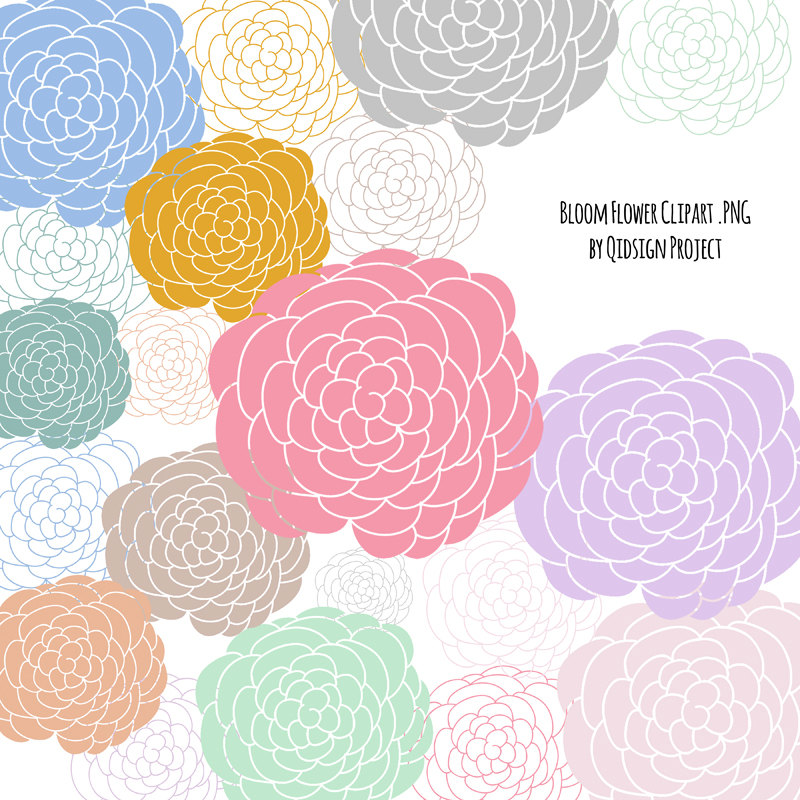 Drawn peony clip art This clipart flower file is