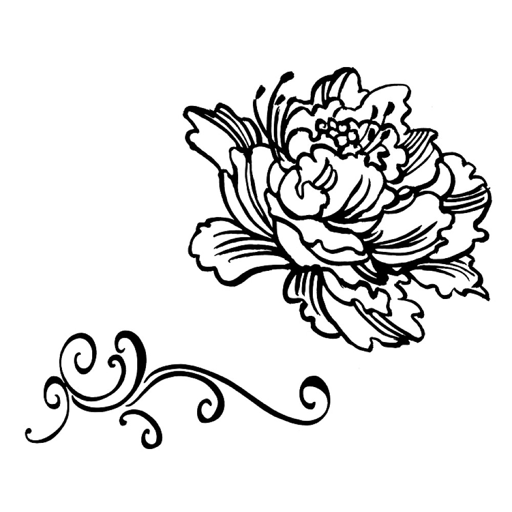 Drawn peony clip art Peony Search Discover Search clip
