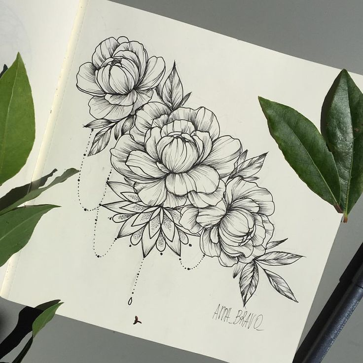Drawn peony delicate flower TattoosFlower • tattoos Best dir