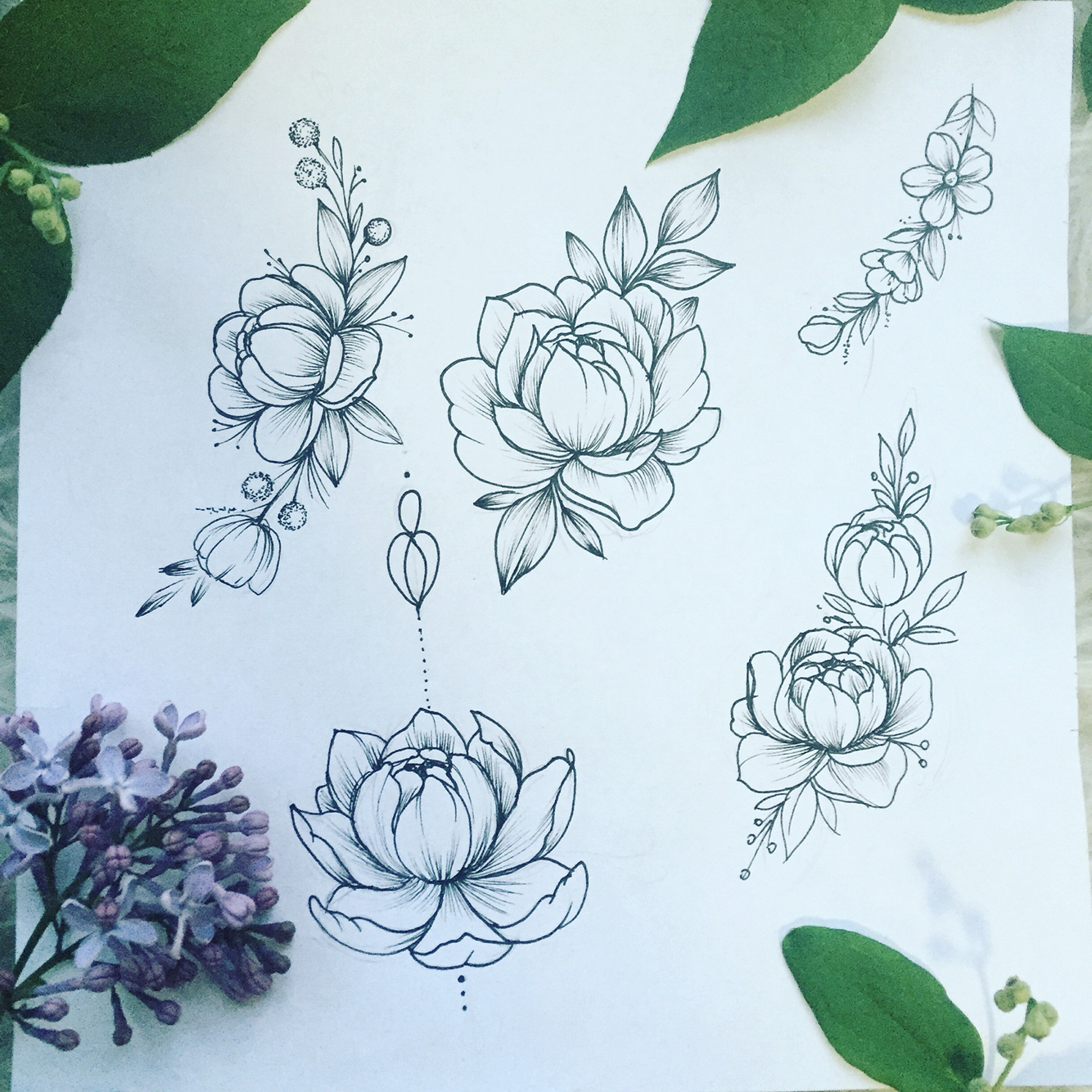 Drawn peony delicate flower Peonies#tattoo#sketch#draw sketches  Peonies Pinterest