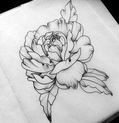Drawn peony vector Elegant and love Tattoos definitely