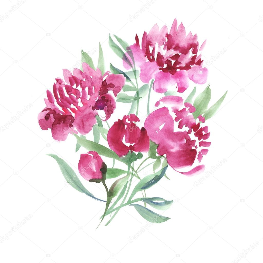 Drawn peony elegant flower Handmade Photo paint flowers drawn