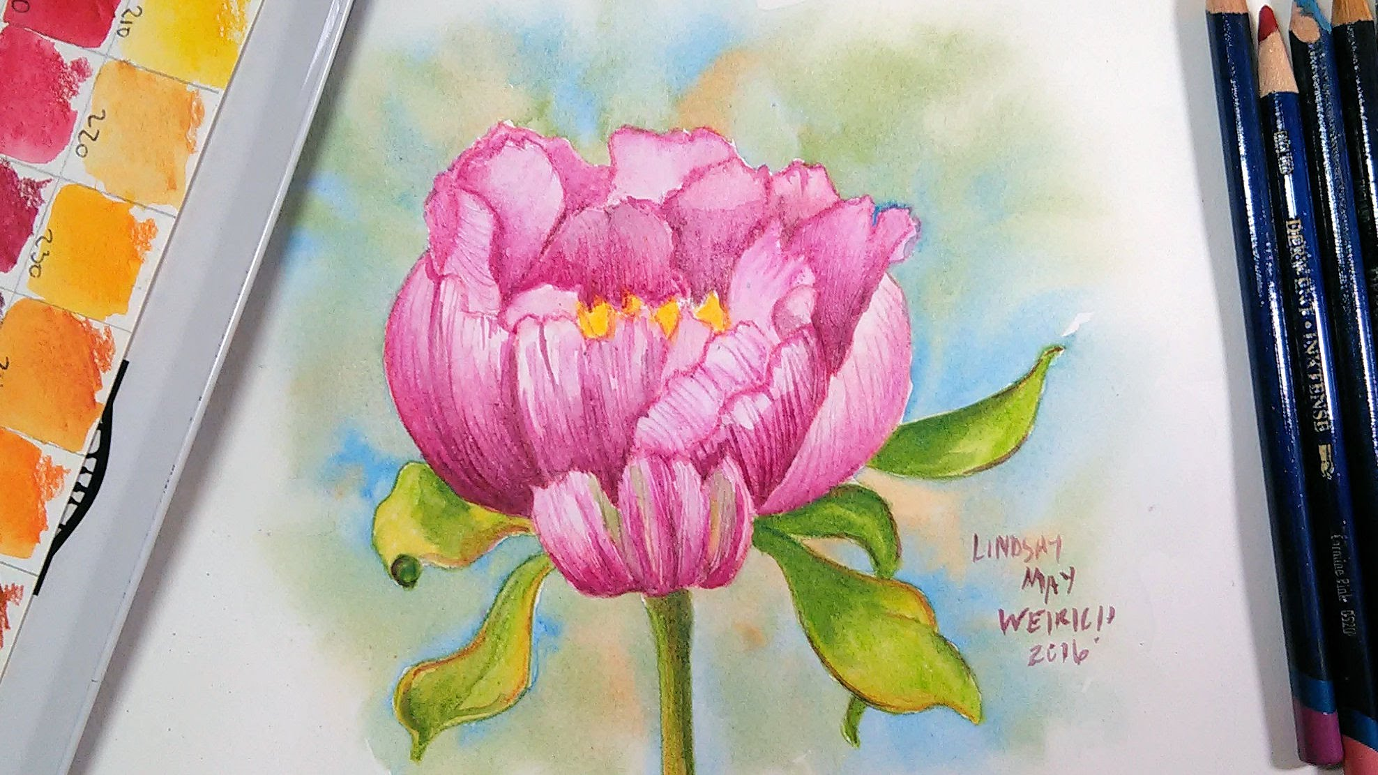 Drawn peony flower bucket Pencils LIVE: Paint a with