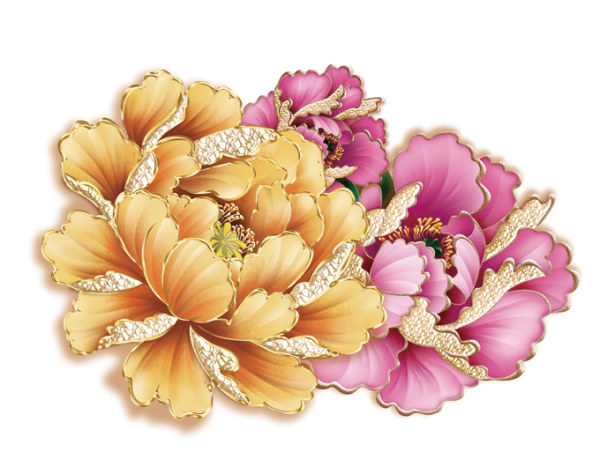 Drawn peony flower png Psd Flower File free download
