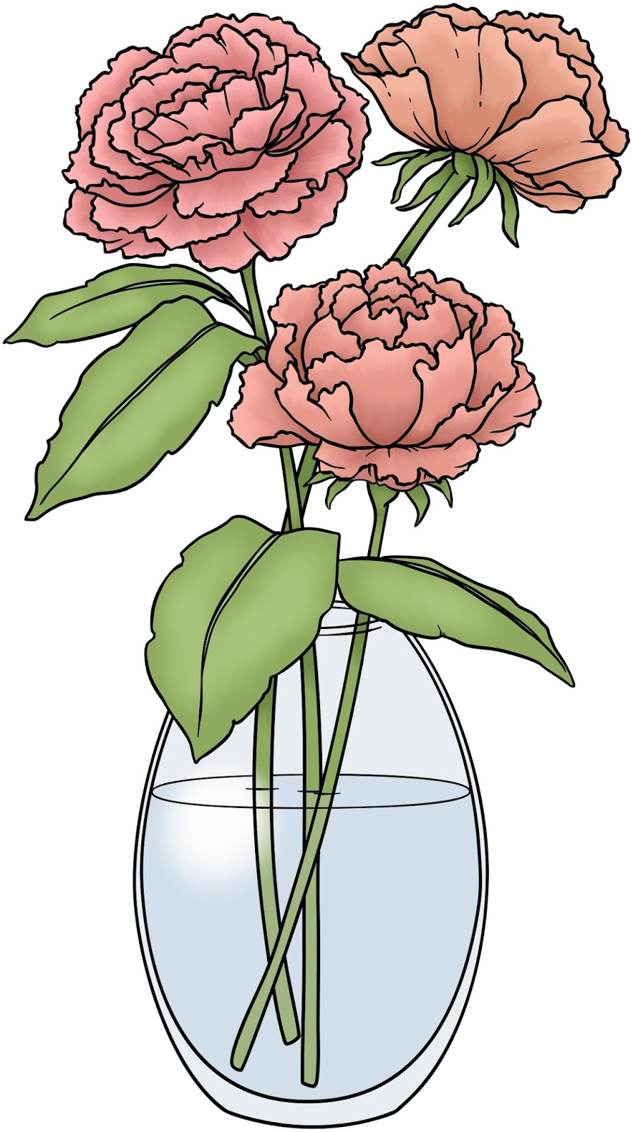 Drawn peony vector In vase a  Remastered:
