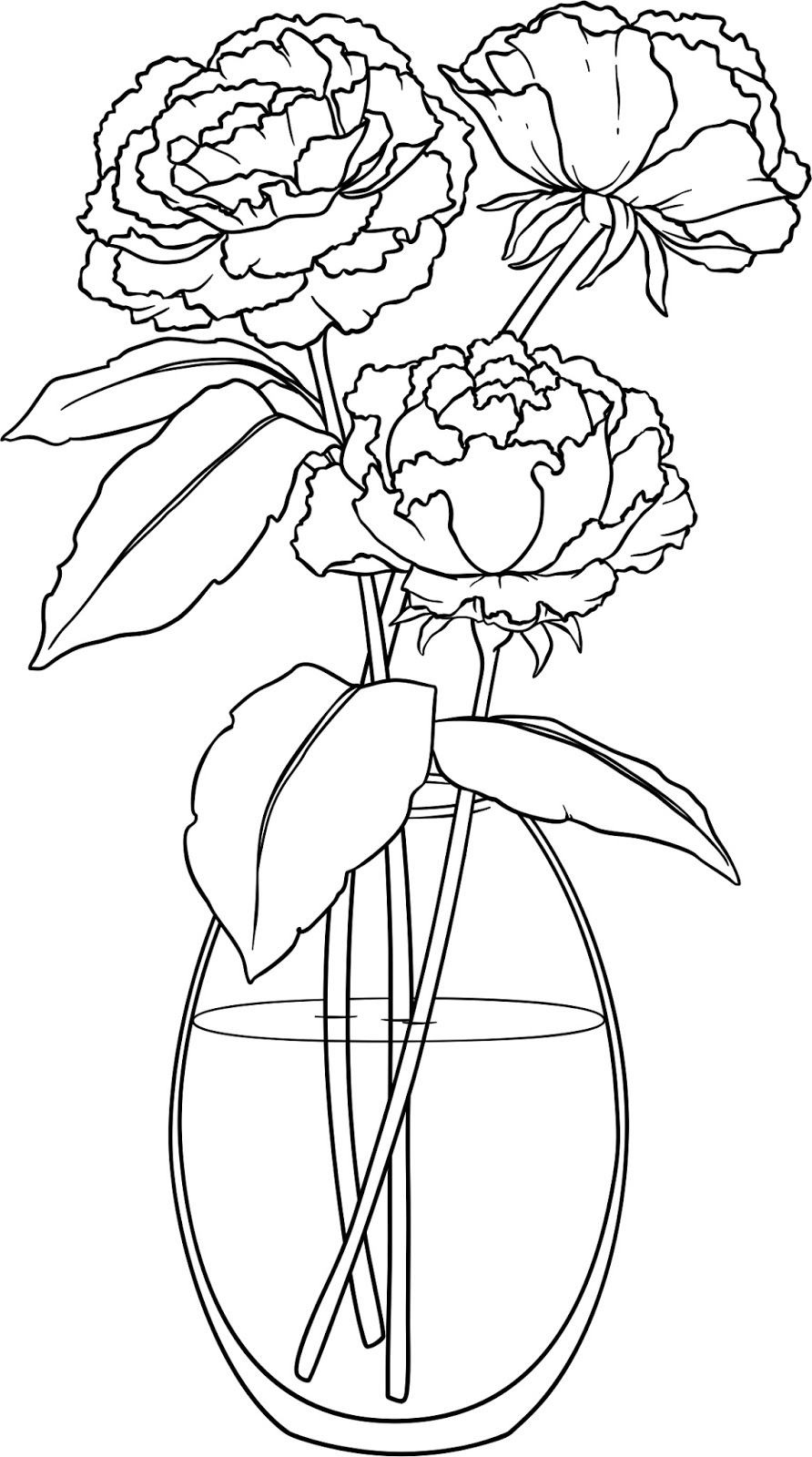 Drawn peony flower vase Just Peonies boy complicated! Place: