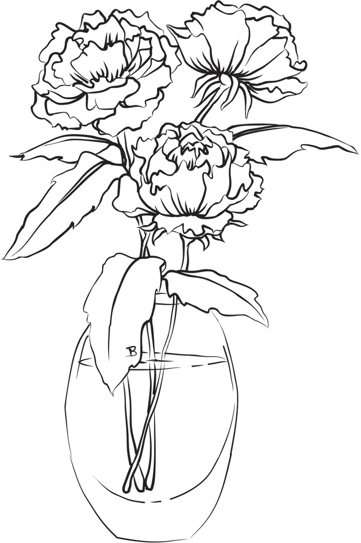 Drawn peony flower vase In Drawing images Images Flowers