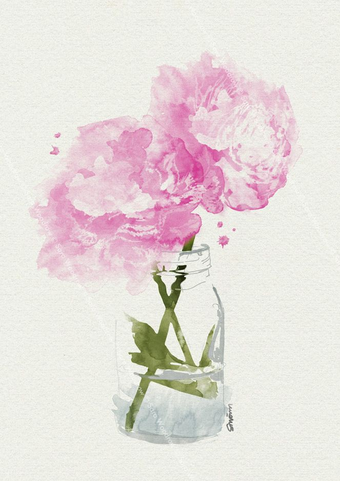 Drawn peony flower vase On Pink Best Find painting