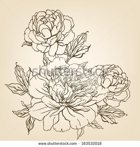 Drawn peony japanese Flowers Vintage drawing by Varvara