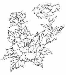 Drawn peony japanese Art (Peony) Studio Tattoo Irezumi