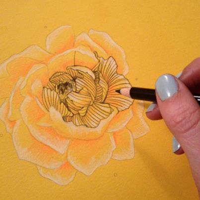 Drawn peony line drawing Design peony bouquet line 'Beautiful