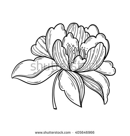 Drawn peony logo Images Peony Logo Pictures Shutterstock