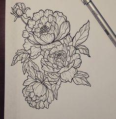 Drawn peony neo traditional Pinteres… ▫ design … More