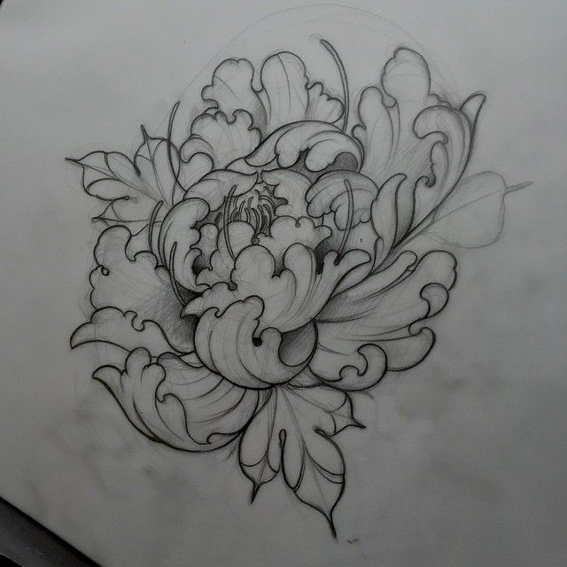 Drawn peony neo traditional Drawing 25+ Pinterest sketching ideas