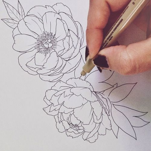 Drawn peony peony flower For about Drawing a ideas