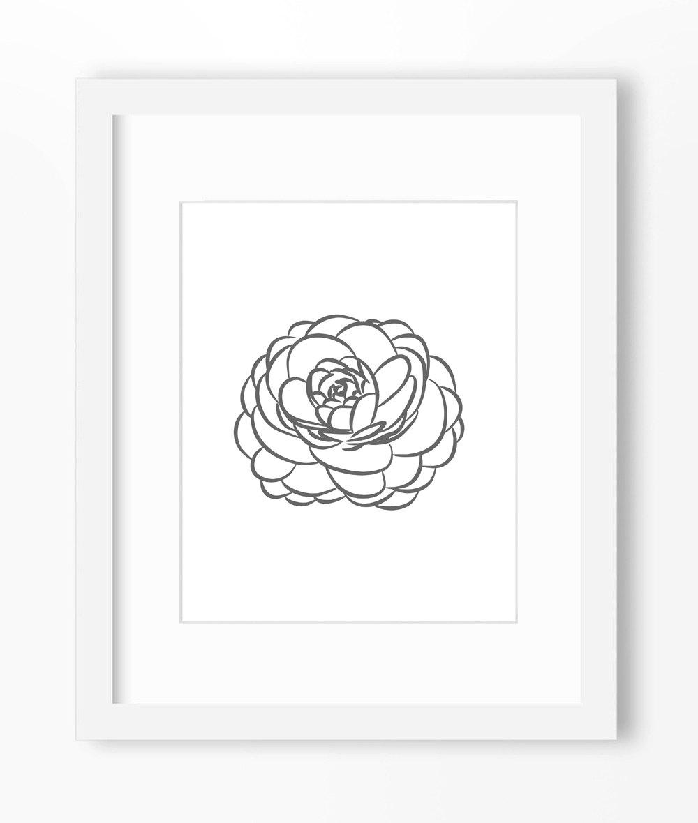Drawn peony peony flower Flower Peony Peony Print Peony