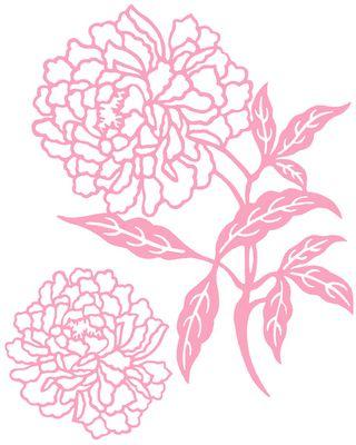 Drawn peony pink peony Beautiful I on attempt will