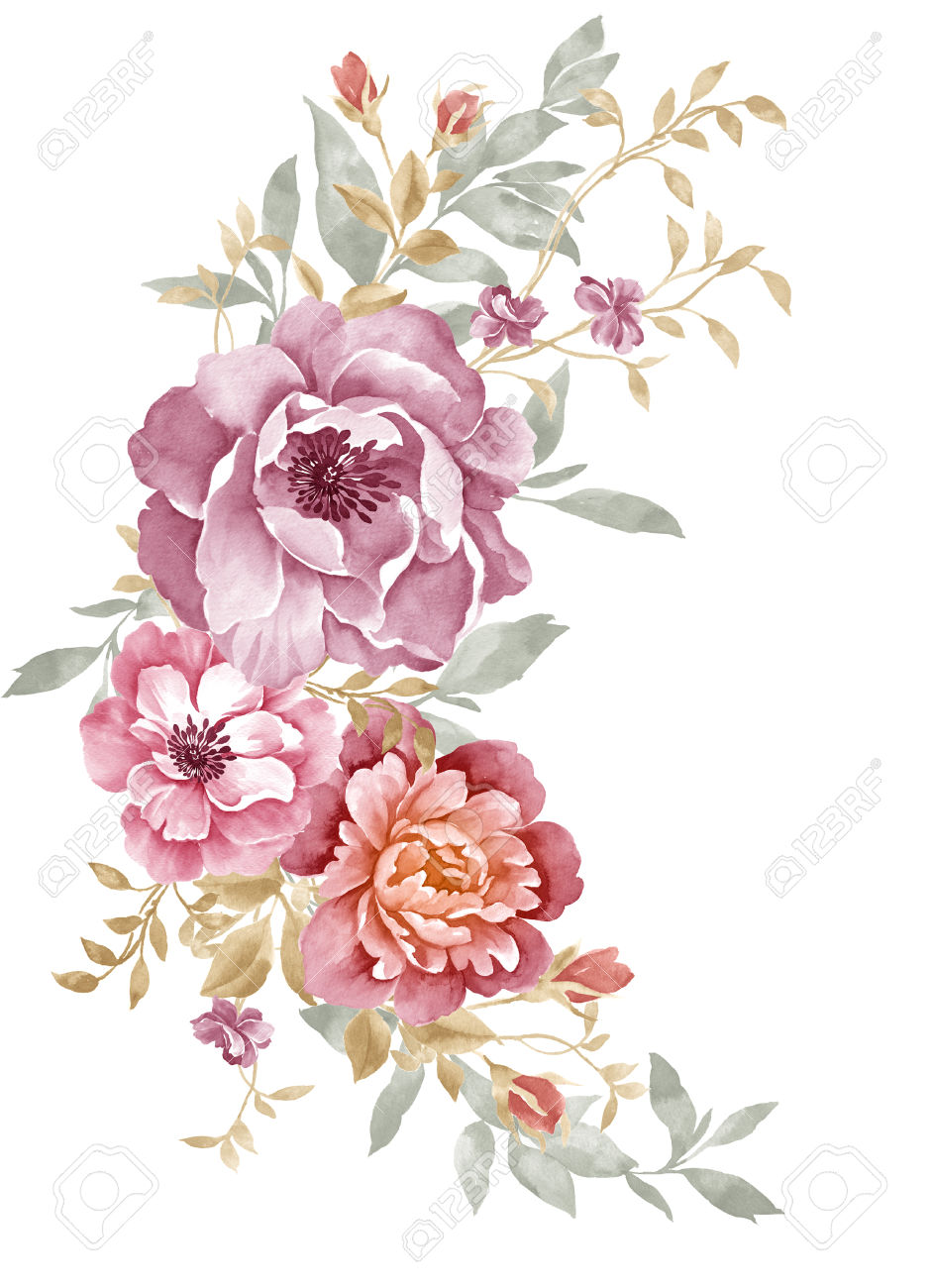 Drawn peony simple Flowers Simple Illustration hand Google