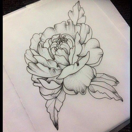 Drawn peony sketch  Tatuajes & Piercing Buscar