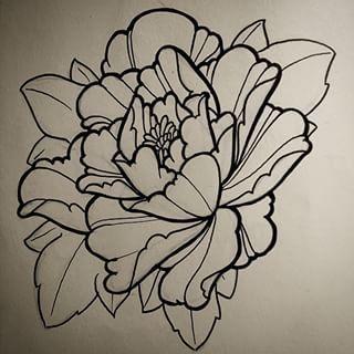 Drawn peony sketch Lines Pinterest โบตั๋น best drawing