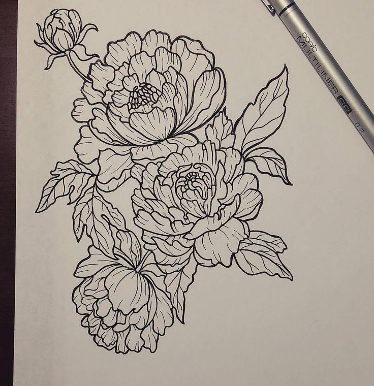 Drawn peony sketch Ideas best Peony drawing design
