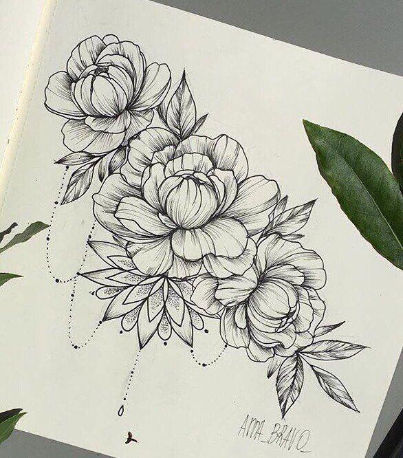 Drawn peony sketch Peony best ideas about и