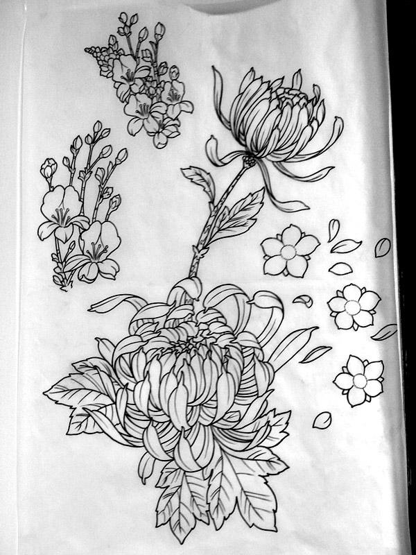 Drawn peony traditional japanese flower Flower Line branch Japanese flower