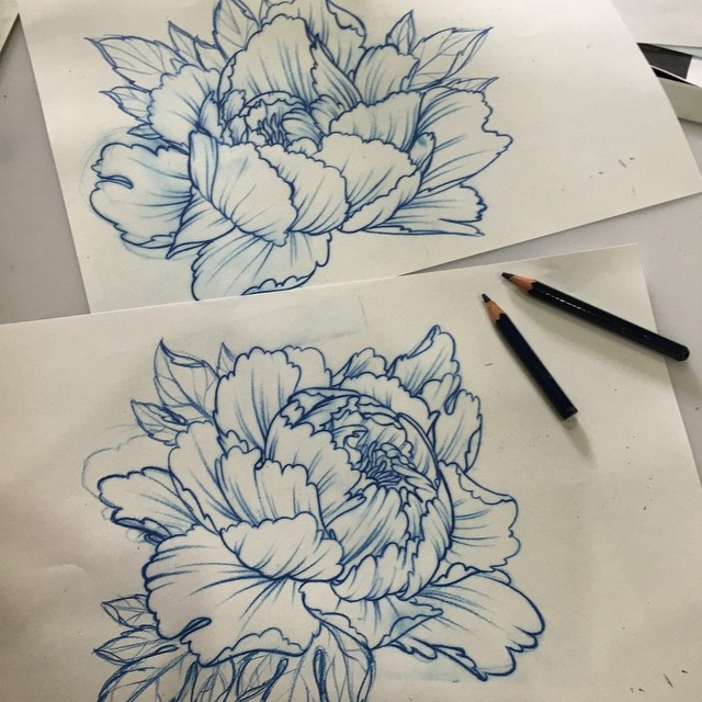 Drawn peony vector #japanese #peony Today tattoo #nature